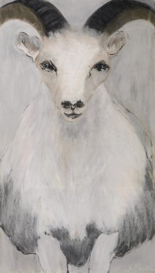 Bestiary: Dall Sheep