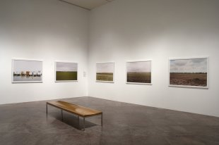 Installation view of Victoria Sambunaris: Taxonomy of a Landscape