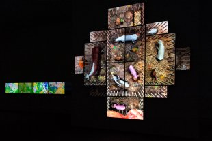 Installation view of Screen Play: Life in an Animated World
